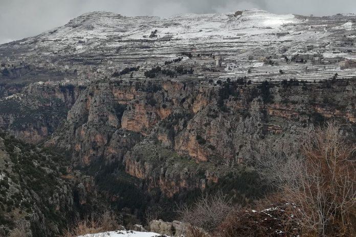 6th Mediterranean Forest Week