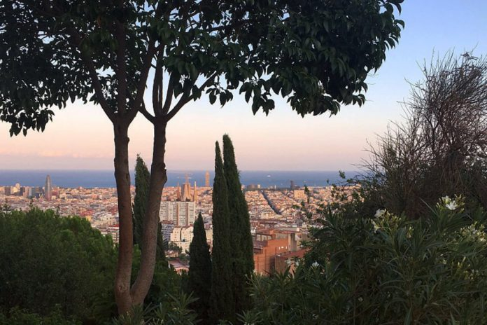urban forest in Barcelona