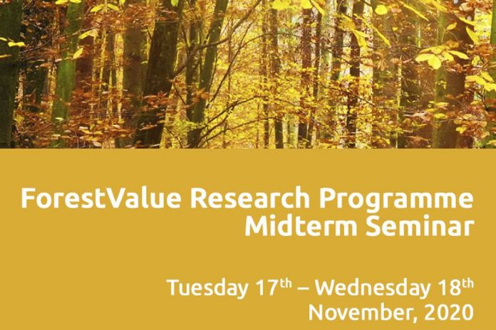 Forest Value event
