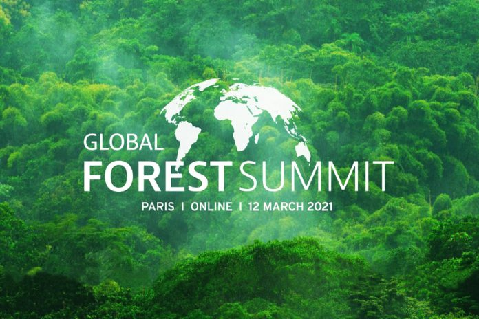 Photo: Global Forest Summit 2021